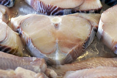 Fish exposed in fish market Stock Images