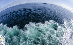 Fish Eye View of the Ocean #2 Royalty Free Stock Images