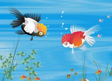 Fish family. Background, illustrations of fish and tropical underwater environment Royalty Free Stock Images