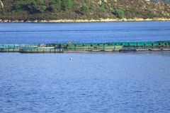 Fish farm Stock Photos