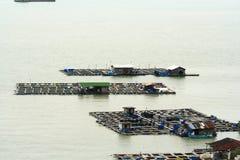 Fish Farm Stock Images