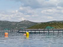 A fish farm in the Adriatic sea of Croatia Royalty Free Stock Photo