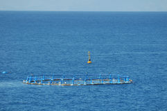 Fish Farm in the Atlantic Ocean Stock Images