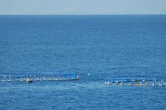 Fish Farm in the Atlantic Ocean Stock Photo