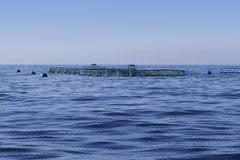 Fish farm on blue ocean sea horizon Royalty Free Stock Photos