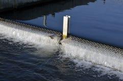 Fish farm. Stock Image