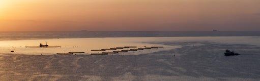 Fish Farm at Dawn Stock Photo
