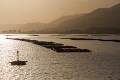 Fish farm in early morning near Miyajima island, Japan stock image