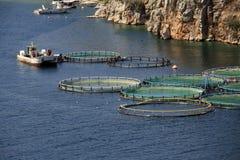 Fish farm, Greece Stock Image