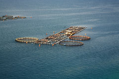 Fish farm Kefalonia Royalty Free Stock Images