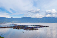 Fish farm on the Lake Maninjau Stock Image