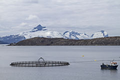 Fish farm in Norway Royalty Free Stock Image