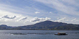 Fish farm in Norway Stock Images