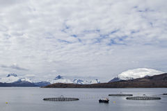 Fish farm in Norway Royalty Free Stock Photography