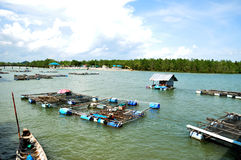 The fish farm, Phuket, Thailand Royalty Free Stock Photo