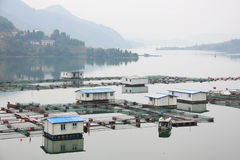 Fish farm in the reservoir. Fisheries in the reservoir of sichuan. China royalty free stock image