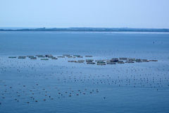 Fish farm in sea Stock Photos