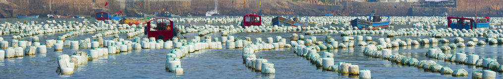 Fish farm in sea Royalty Free Stock Photos