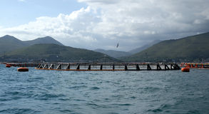 Fish farm in tirreno sea Royalty Free Stock Photos
