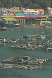 Fish farming. Harbour in Hong Kong Royalty Free Stock Images