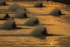 Fish farming air circulators generate oxygen Stock Image