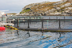 Fish farming in cages. At the coast Stock Photo