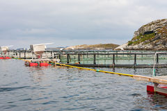 Fish farming in cages in the sea Royalty Free Stock Photos