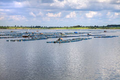 Fish farming at the dam Royalty Free Stock Images