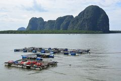 Fish farming , Fish cage in the sea. Note  select focus with shallow depth of field Royalty Free Stock Image