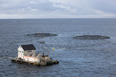 Fish Farming Stock Photography