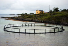 Fish farming in Norway. A fish farm in Helgeland, northern Norway Stock Photo