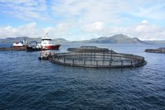 Fish Farming off the West Coast of Scotland royalty free stock image