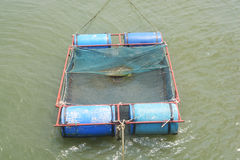 Fish farming Stock Photos