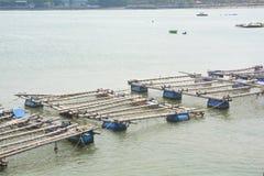 Fish farming Royalty Free Stock Images