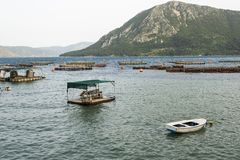 Fish farming in the sea. Fish farming at the sea Royalty Free Stock Images