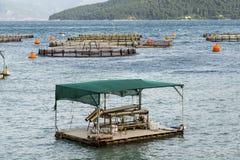 Fish farming in the sea Stock Photo