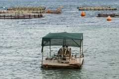 Fish farming in the sea. Fish farming at the sea Stock Images