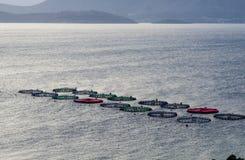 Fish farming in the sea Royalty Free Stock Photo