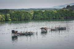 Fish farms, Fish cages at The estuary Laem Sing Royalty Free Stock Photos
