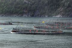 Fish farms in Hardanger fjord, Hordaland county, Norway.  royalty free stock photography