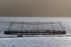 Fish farms in Hardanger fjord, Hordaland county, Norway.  royalty free stock photos