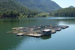 Fish farms Royalty Free Stock Photo