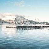 Fish farms in northern Norway Stock Photos