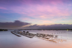 Fish farms at sunrise in chanthaburi,Thailand. 1 Royalty Free Stock Photography