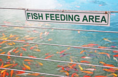 Fish Feeding Sign Stock Photography