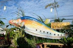 Fish Festival Royalty Free Stock Photos