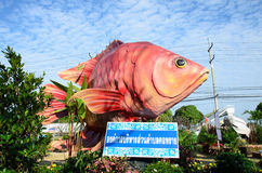 Fish Festival Royalty Free Stock Images