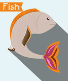 Fish figure design Royalty Free Stock Photo