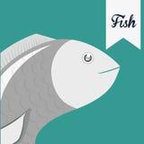 Fish figure design Stock Image