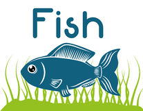 Fish figure design Royalty Free Stock Photo